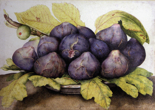 """A Plate of Figs"" by Garzoni"