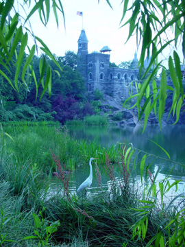 Belvedere Castle and heron