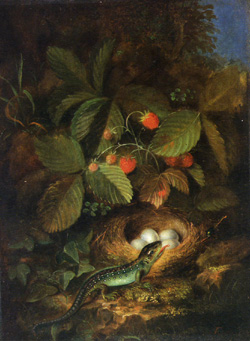"""Fruit Piece with Birds Nest and Lizard"" by George Forster"