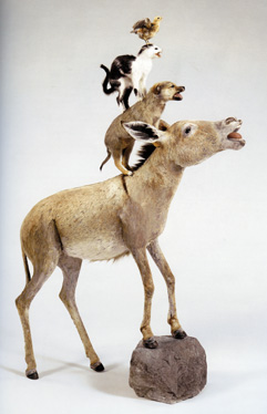 taxidermied animals by Cattelan