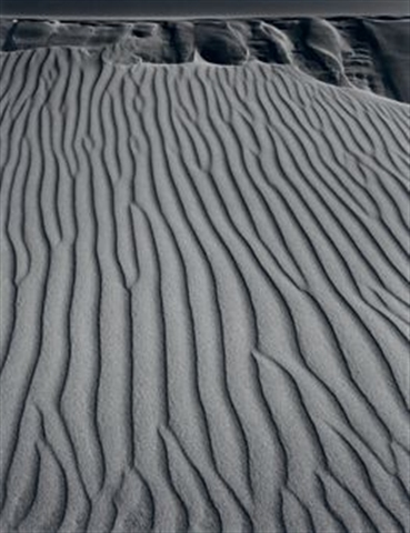 """San Dunes, Oceano, California"" by Adams"