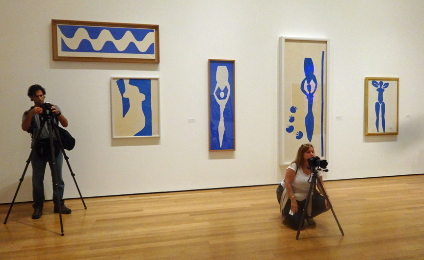 The Wave and Venus by Matisse