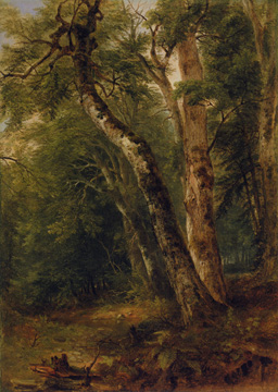 """Woodland Interior"" by Durand"