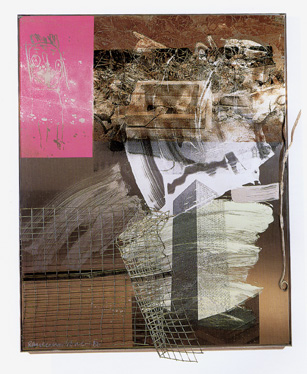 """Territorial Rites (Shiner)"" by Rauschenberg"