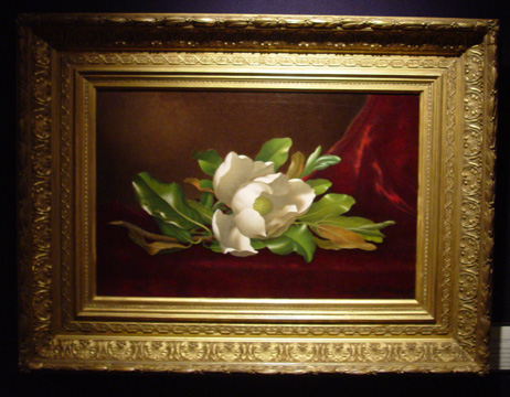 """Single Magnolia on Red Velvet"" by Heade"