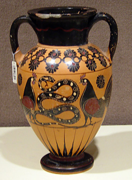 Chalcidian black-figured neck-amphora