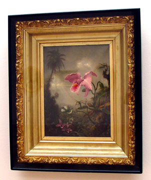Two hummingbirds and two orchids by Heade